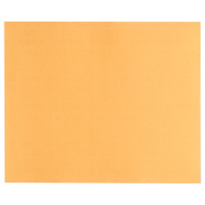 SCHUURVEL C470 BEST FOR WOOD AND PAINT, 230 X 280 MM, KORREL 400